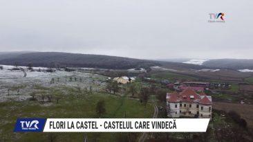 TVR: Flori la Castel - Castelul care vindecă